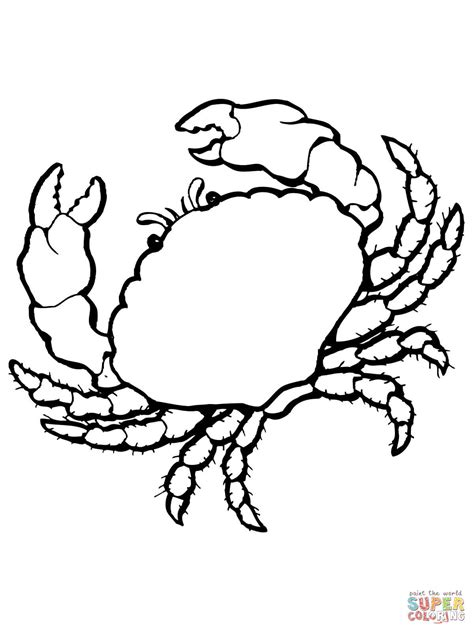 king crab coloring page sea crab coloring page free printable coloring pages