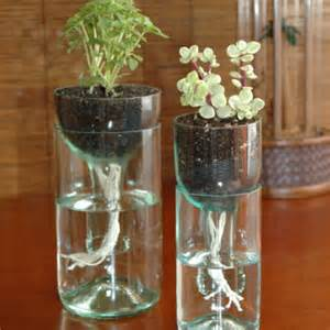 beautiful Wine Bottle Self Watering Planter #7: Self-watering-planter-made-from-recycled-bottles.jpg