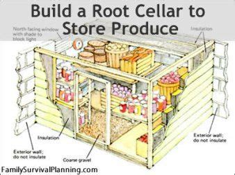 match in the root cellar how you can spark a peak performance culture books 25 best ideas about root cellar plans on