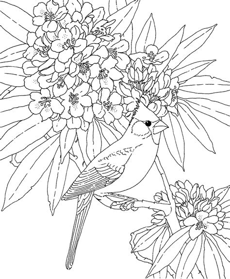printable flowers and birds coloring pages pictures imagixs stained glass and