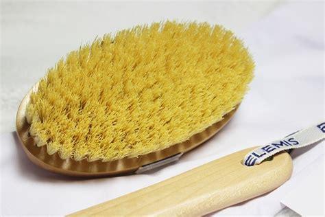 Cactus Detox Brush by Elemis Detox Skin Brush And Vanilla
