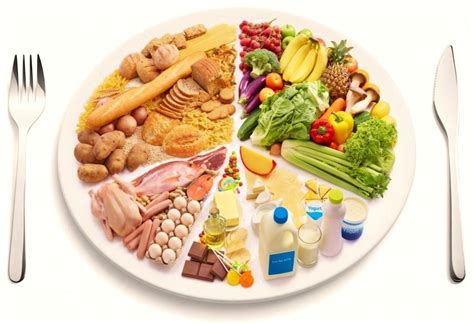 alimentacion equilibrada la guia de las vitaminas
