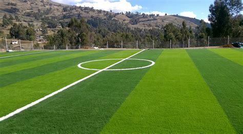 Bibit Rumput Lapangan Sepak Bola tips mengenali jenis rumput lapangan sepak bola live