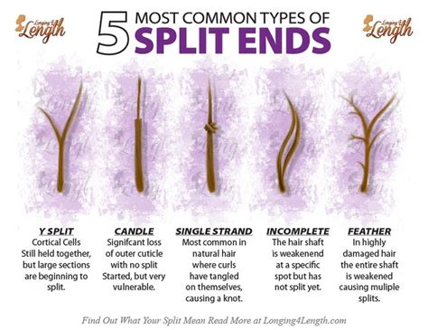 different ways to cut the ends of your hair types of split ends and what they mean about your hair