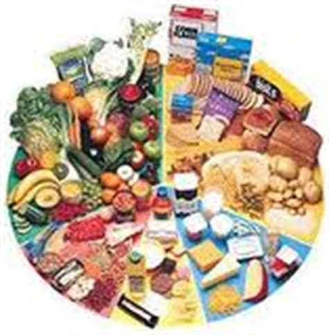 imagenes de alimentos naturales y procesados proyectociencias3b alimentos y nutrientes alimentos