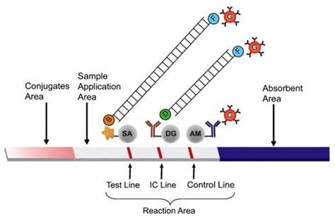 np sensor tester wiring diagram wiring diagram