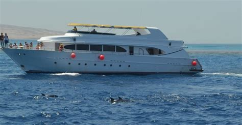 boat trip hurghada private boat trip in hurghada 187 snorkeling fishing diving