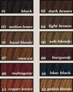garnier hair color chart trends hair color chart garnier