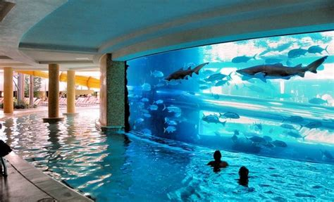 Home Design Big Fish 6 Scary Water Slides Passing Among Sharks Fabulous