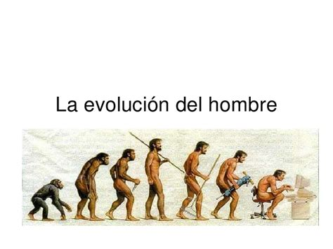 la evoluci 243 n del hombre