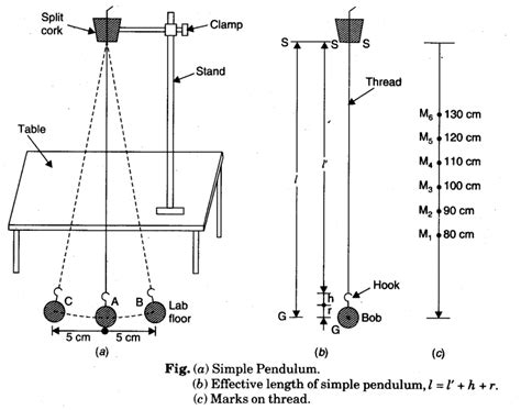Pendulum L by Using A Simple Pendulum Plot Its L T2 Graph And Use It To