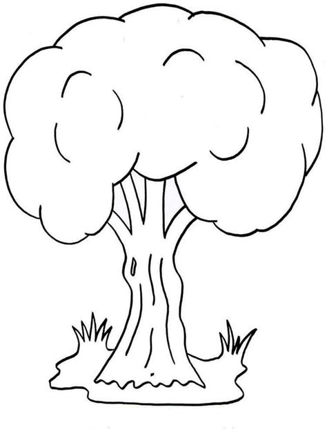 tree coloring pages trees coloring pages and print trees coloring pages