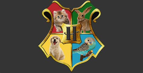 which hogwarts house do you belong in what harry potter house are you quiz house plan 2017