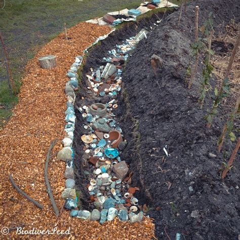 water purifying storm drain  biodiverseed water water management yard drainage
