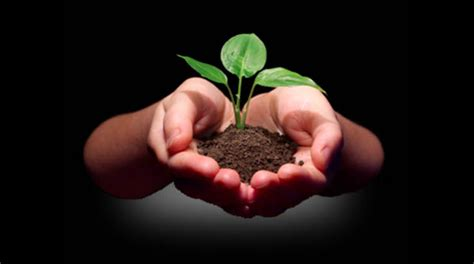 What Is A Church Planter by Four Be S To Planting Well And Planting Healthy