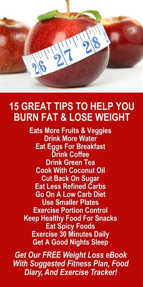 Detox Teas To Help You Get Morphine by Best 25 Amazing Weight Loss Ideas On Food