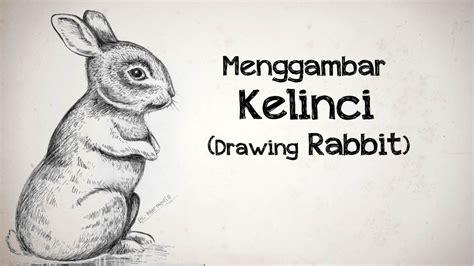 youtube tutorial menggambar hewan drawing tutorial tutorial menggambar kelinci rabbit