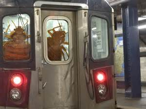 Bugs Found In Beds Mta Investigating Bedbugs On Nyc Subway 7 Train Business