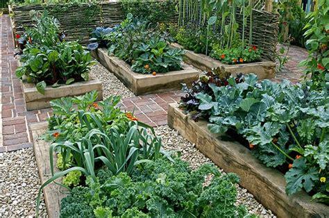 awesome gardening ideas  beginners leafpanda