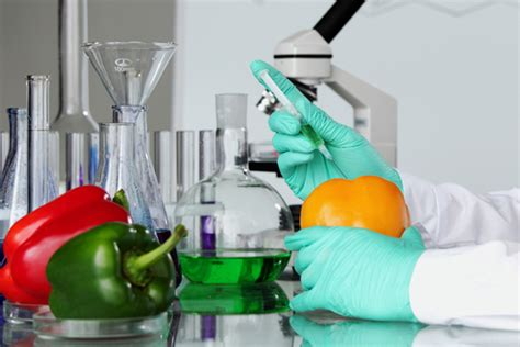 careers  food technology     food technologist opportunities  food