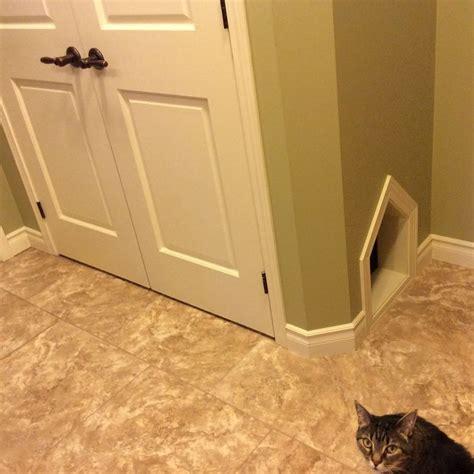 Cat Litter Closet by Best 25 Litter Box Enclosure Ideas On Cat