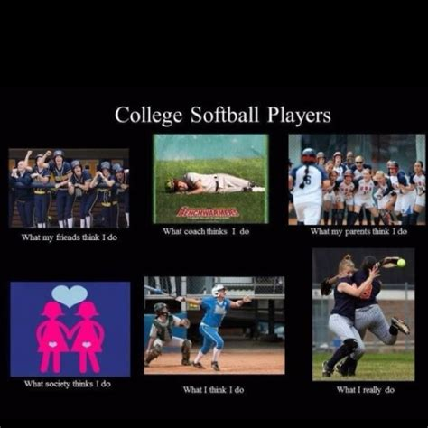 Softball Memes - 57 best mizzou tigers images on pinterest