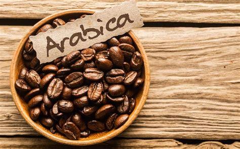 Kopi Robusta 1kg By Defoya Coffee arabica coffee cubico coffee