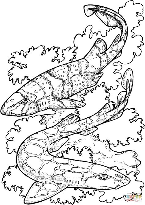 shark coloring pages for adults kids grig3 org