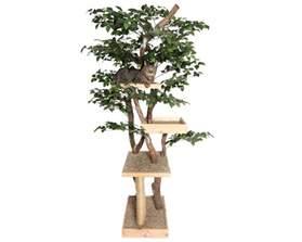 d 233 couvrez nos arbres 224 chat design naturels et audacieux