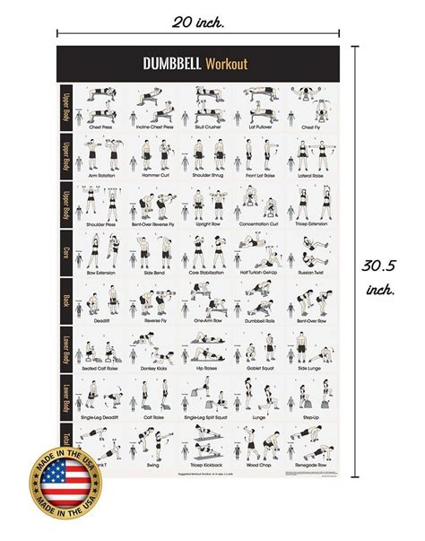 dumbbell workout exercise poster home dumbbell