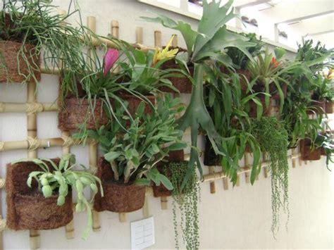 fazer plantas decora 231 227 o de muros plantas toda perfeita