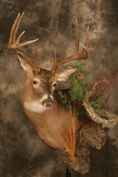 10 X 10 One Flexiroll Mat - wall pedestal mule deer mount cat tracks wildlife design