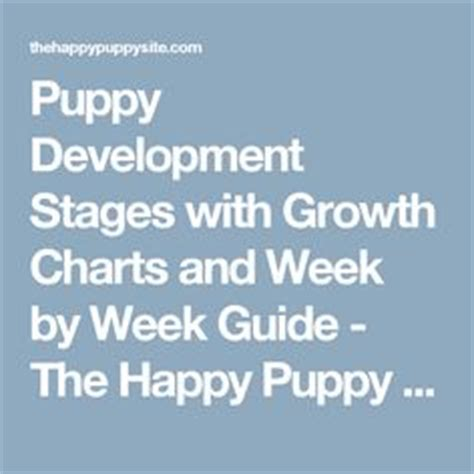 puppy schedule week by week puppy development stages with growth charts and week by week guide week by week we