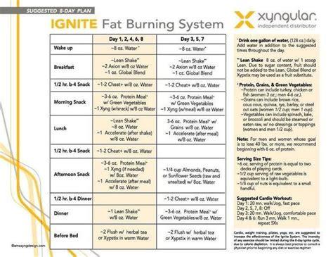 Redbox Detox Reviews by Xyngular Weight Loss Meal Plan Dandk