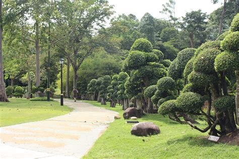 Perdana Botanical Garden Kuala Lumpur Perdana Botanic Garden Green Lung Within Bustling Metropolis Aroma Asian