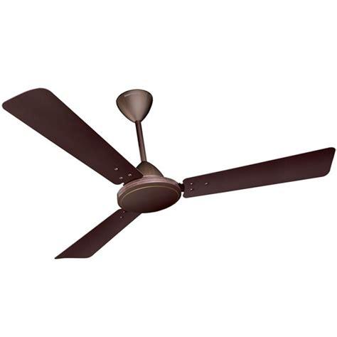brown ceiling fans buy crompton jura 48 quot bakers brown ceiling fan at best