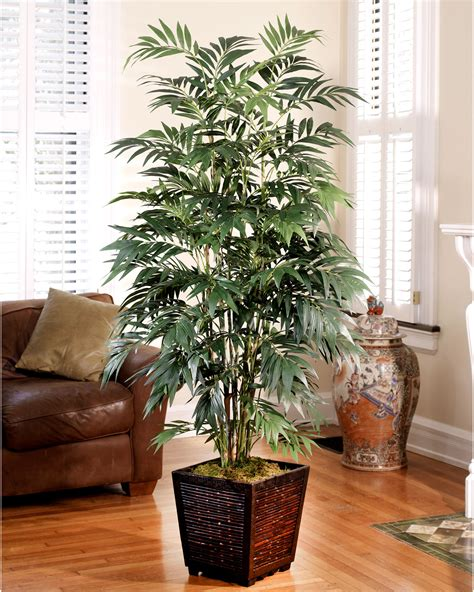 Home Decor Trees Decorate With A Customer Favorite 6 Silk Bamboo Palm Tree At Petals