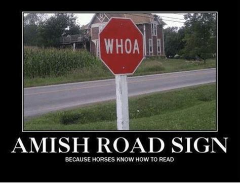 Sign Memes - whoa amish road sign because horses know how to read