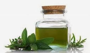 Minyak Peppermint setetes minyak peppermint hilangkan gatal gigitan serangga jerat qc
