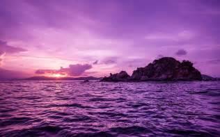 h 252 bsche lila pelican islands hintergrundbilder h 252 bsche
