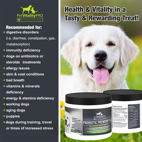probiotics for dogs save 33 chewable probiotics for dogs with digestive enzymes probiotic
