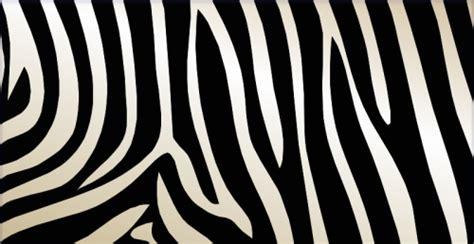 zebra pattern in photoshop zebra skin design in photoshop