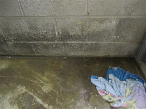 mold on basement walls cinder block mold basement walls how to get rid of
