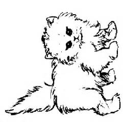 cat kitten coloring pages coloring