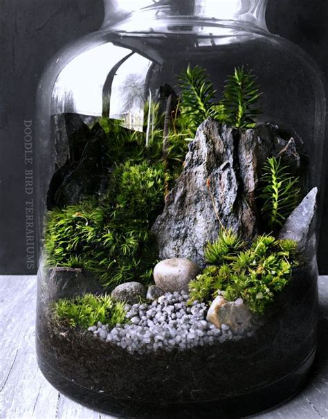 best plants for self contained terrarium 25 best ideas about terrarium on terrarium diy diy terrarium and succulent terrarium