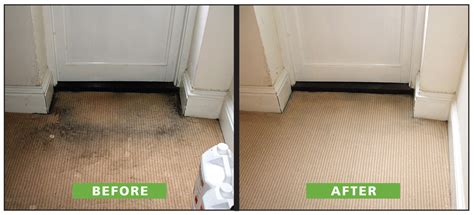 professional rug cleaning why hire a professional carpet cleaning company in bromley