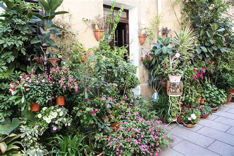 balconi invernali fioriti quot balconi fioriti a villanova quot grande festa per la