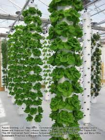 Vertical Hydroponic Garden 25 Best Ideas About Vertical Hydroponics On