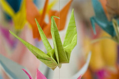 Japanese Cranes Origami - origami japanese paper folding kcp international