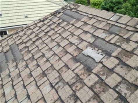 reasons why your roof is leaking smart roofing mississauga